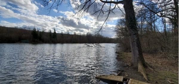 copy of Fishing rental